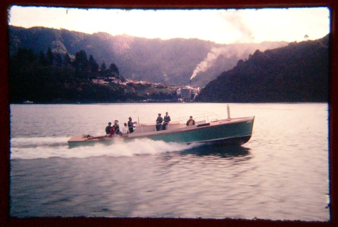 Rorqual in the Marlborough Sounds as a Whalechaser