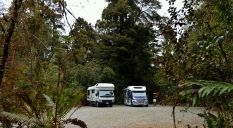 Our park at Pelorus Bridge