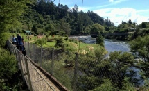 The swing bridges at Karangahake looking behind!