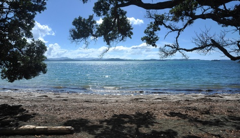 Across Kawau Bay