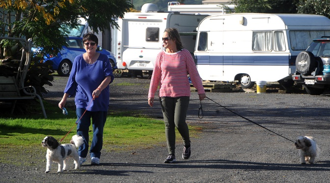 Motorhome Friends at Paeroa