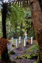 Joshua Morgan's Grave