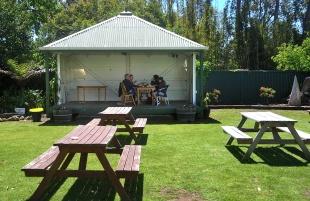 Lunch in the Beer garden