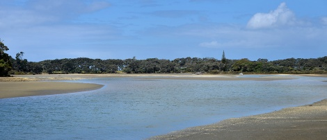 The Puhoi Estuary