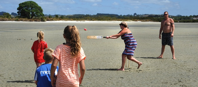 Cricket on the mudflats