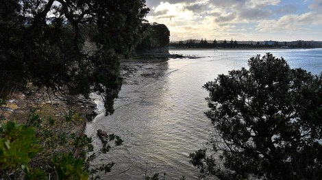 From Jacobs Ladder looking towards Orewa