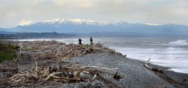 People collecting Driftwood down by the Greymouth Breakwater