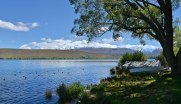 Lake Alexandrina with boat sheds