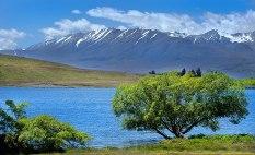 Across Lake McGregor