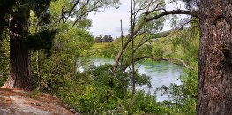 Clutha river from the Trail