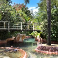 The Lost Spring in Whitianga