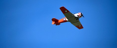 One of the Harvards