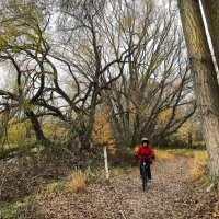 Alexandra to Clyde River Bike Trail
