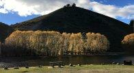 By the Lowburn lake