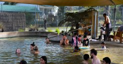 People enjoying the pool