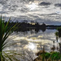 On the banks of the mighty Waikato