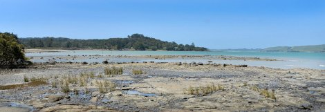 Looking out to the Kaipara