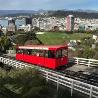 Work in Wellington
